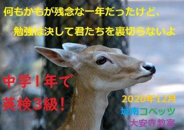 (red-3520933_960_720)大安寺210105.jpg