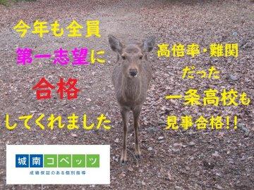 IMG_0087-5(ブログ用).jpg
